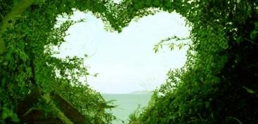 beautiful-love-nature